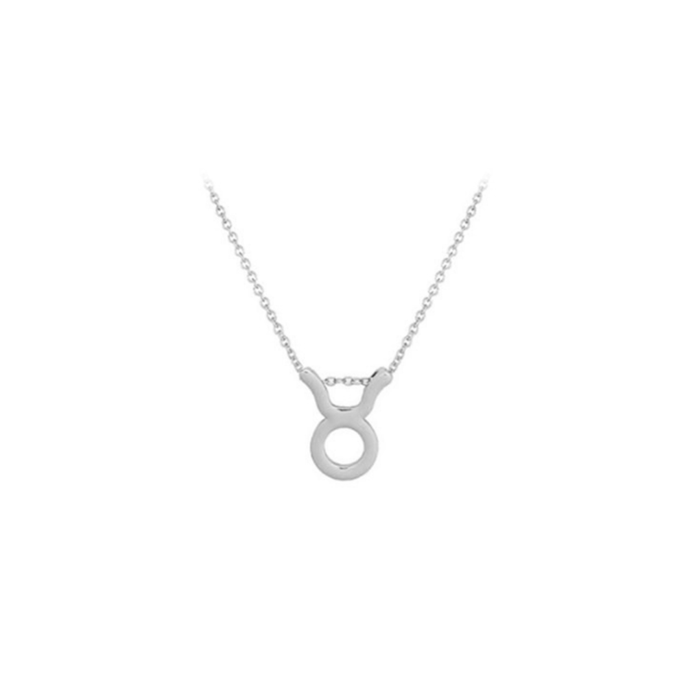 JVD Stříbrný náhrdelník SVLN0195XH200BY BÝK