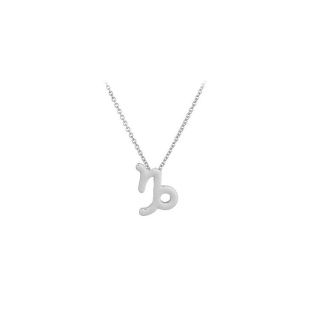 JVD Stříbrný náhrdelník SVLN0195XH200KO KOZOROH